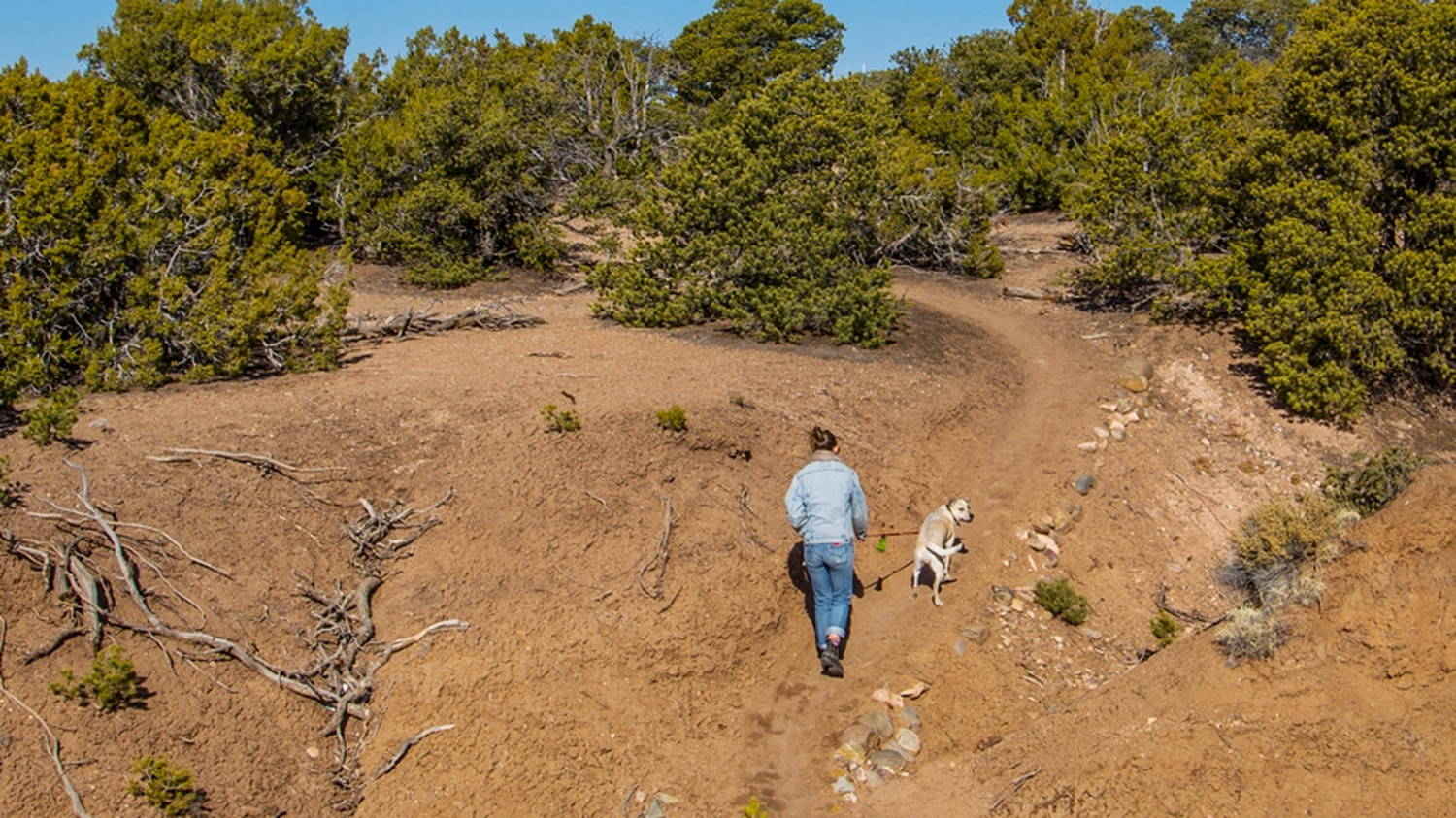 Santa Fe's Grand Unified Santa Fe Trail Organization, GUSTO for short, has spent years steadily increasing the number of pedestrian and bike trails that connect our outdoor open spaces.