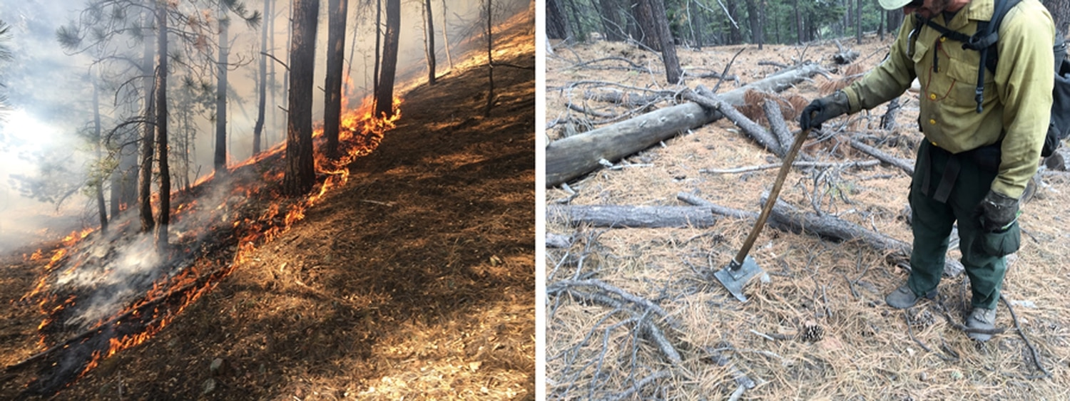 Left: A prescribed burn in the Santa Fe Watershed in November of 2017.Right: A firefighter shows needle cast and duff, which are the kinds of fuel prescribed burns are designed to get rid of to mitigate the risk of future high-severity fires.