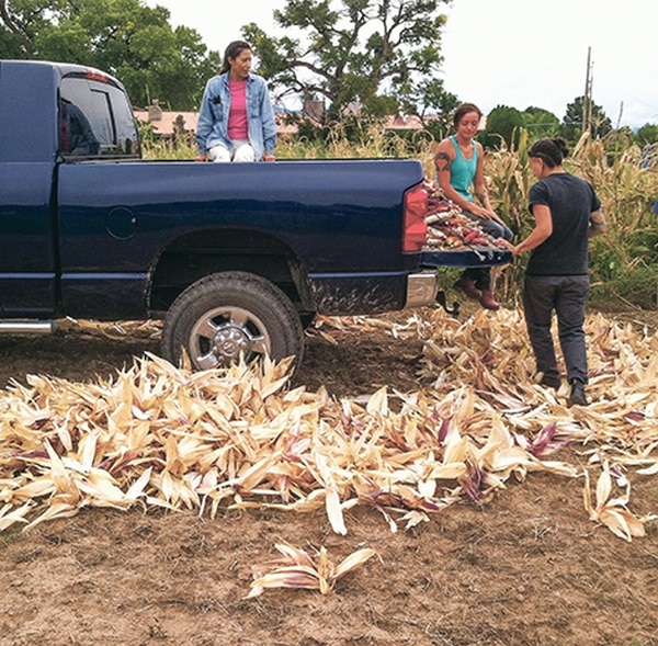 The pickup truck wasn't available to their ancestors, but the corn was.