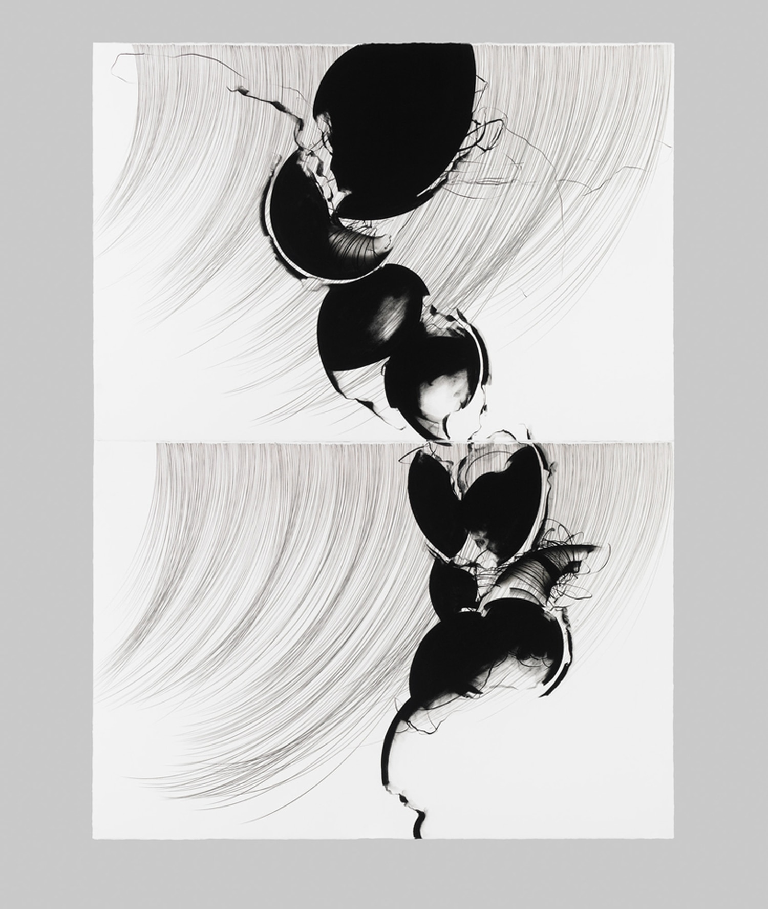 Texas artist Linda Lynch's black pigment drawings come to Santa Fe for the opening of new gallery space FOMA.