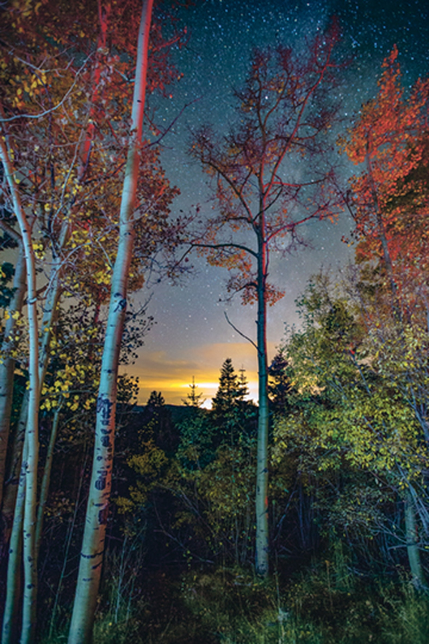 Aspen Vista at night, from one of our 2016 Annual Manual Photo Contest winners.