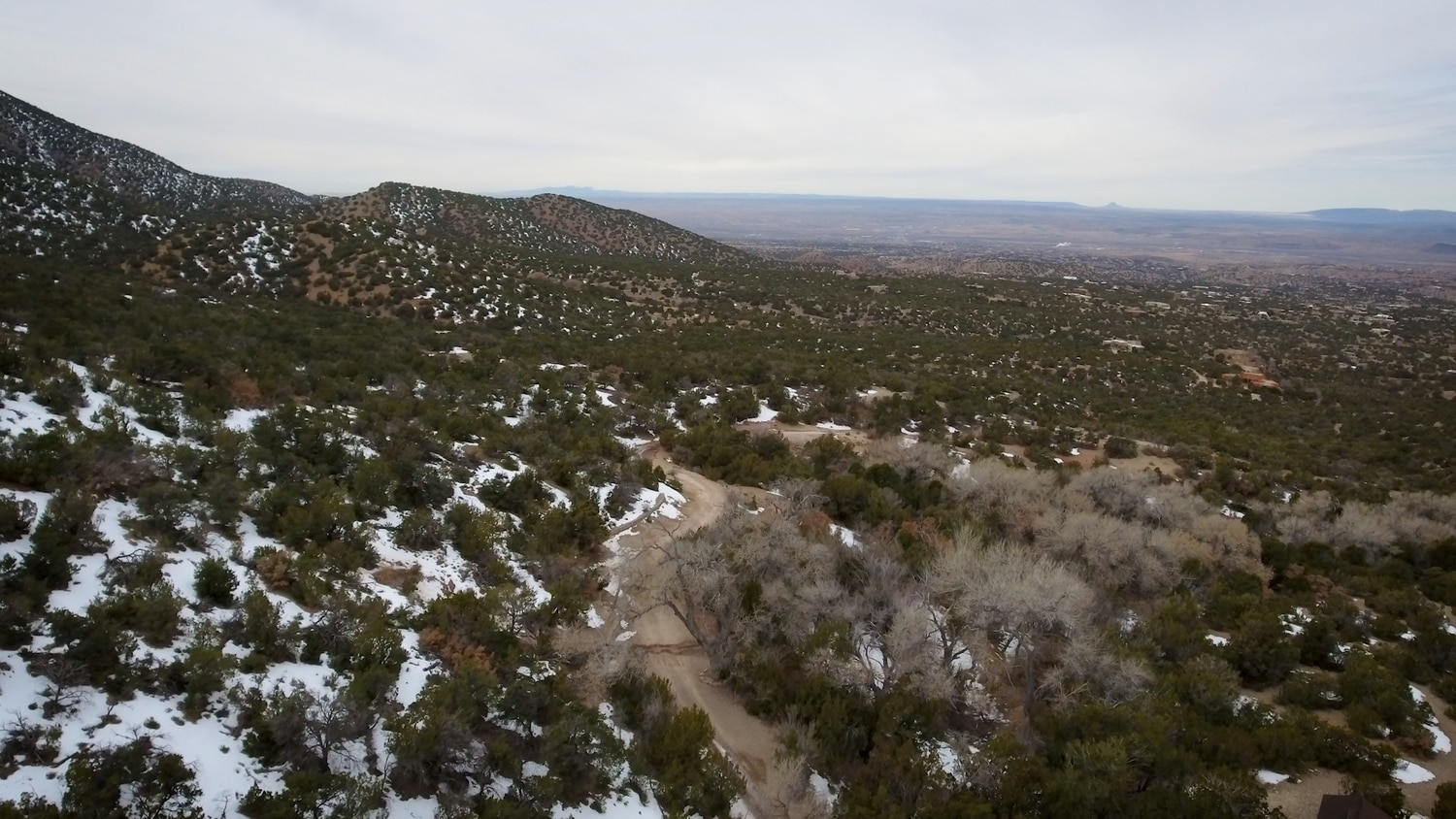 Drone footage of Tunnel Springs and its cottonwood bosque