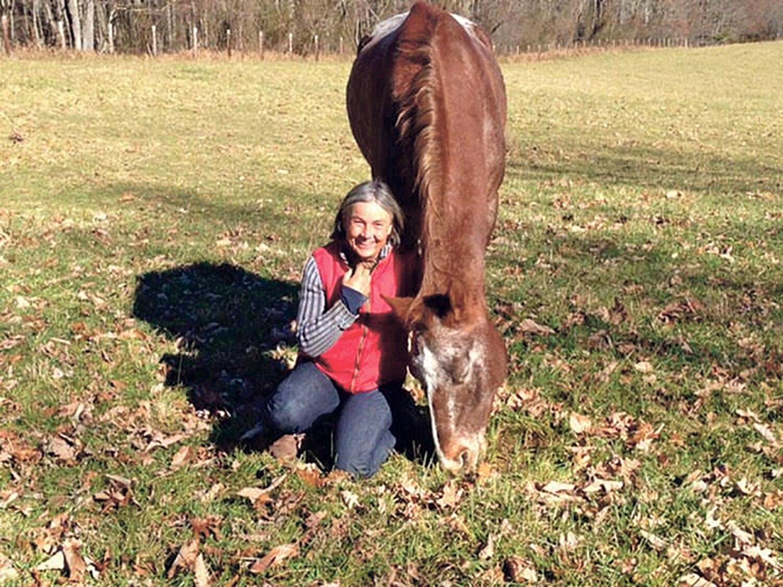 Gigi Gaulin's Nez Perce horse Toisin now resides at Sky Mountain horse sanctuary.