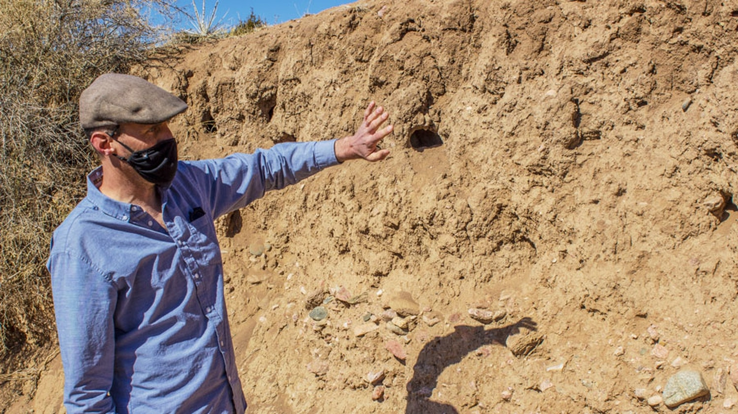 Aaron Kauffman points out the conditions intensifying the erosion processes acting on this incised wall of the Arroyo de los Pinos, just south of the La Farge Library.