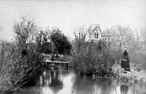 Carp pond in Archbishop's garden near Saint Francis Cathedral, circa 1887. Courtesy Palace of the Governors Photo Archive (NMHM/DCA). Negative No. 15264.