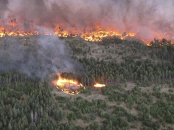 Drought conditions, with moisture levels ranging below 1 percent, created ideal conditions for this spot fire that burned in the Jemez Mountains last summer.