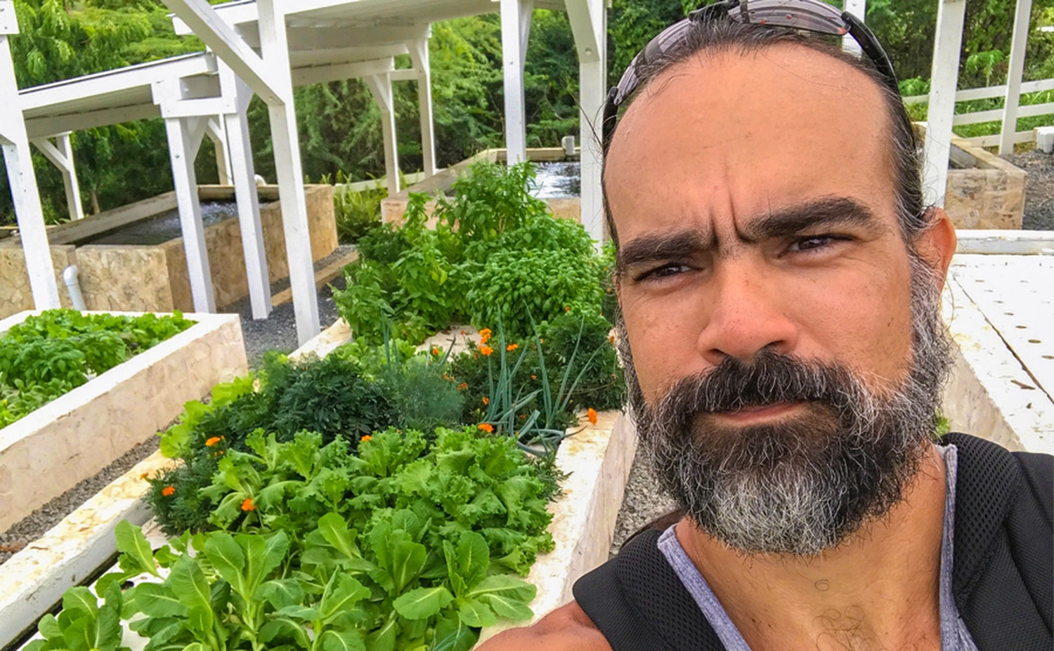 SFCC greenhouse manager and instructor Pedro Casas Cordero came to the US after Hurricane Maria destroyed his farm in Puerto Rico.