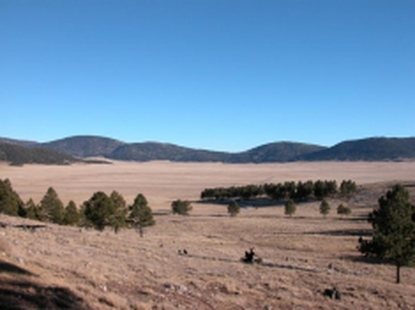 Proponents of the plan to bring the Valles Caldera National Preserve under the National Park Service umbrella argue its current push to be financially self-sustainable impedes public access.Credits: Teri Nolan