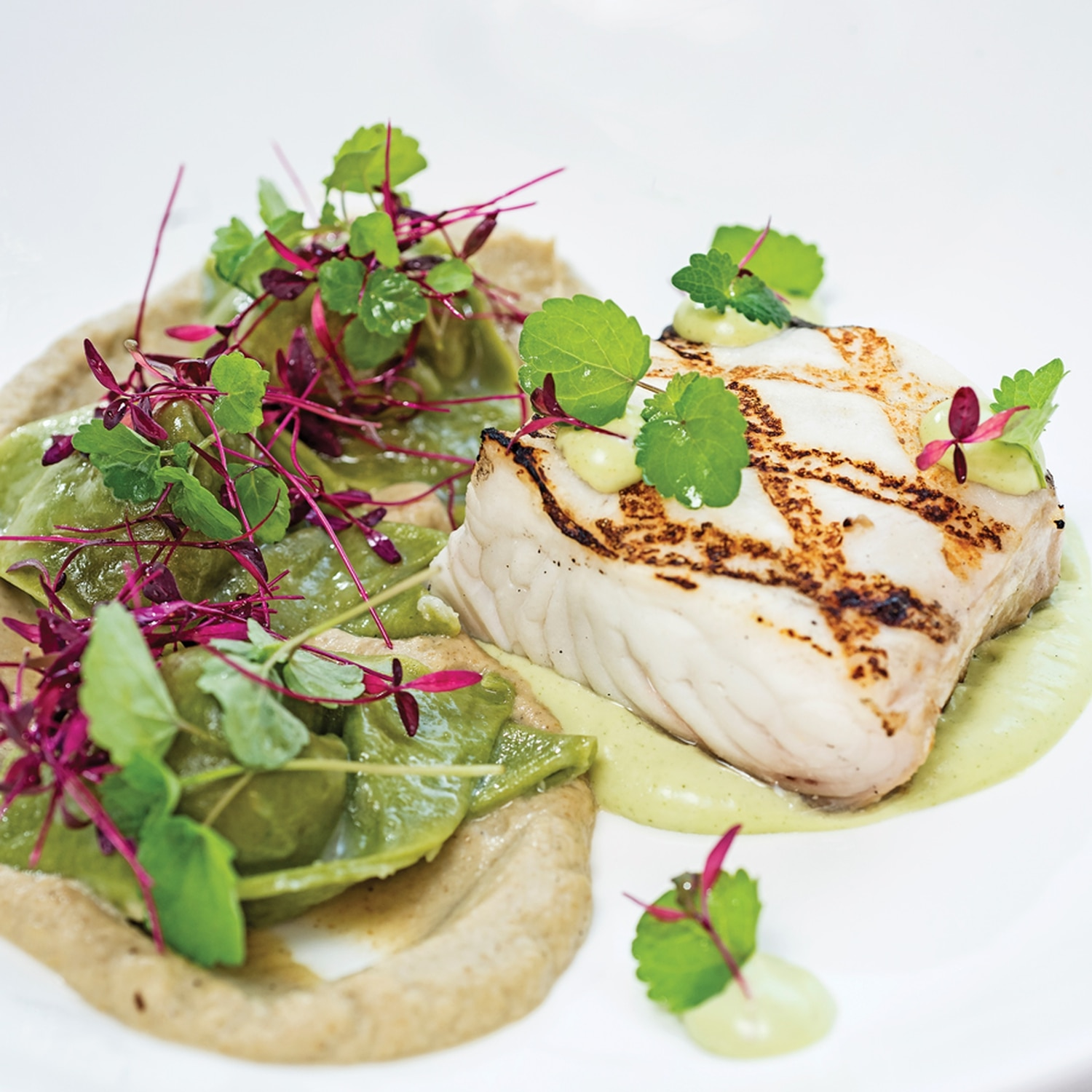 Grilled halibut with shrimp and corn tortellini, eggplant purée, mint and yogurt emulsion, and anise hyssop