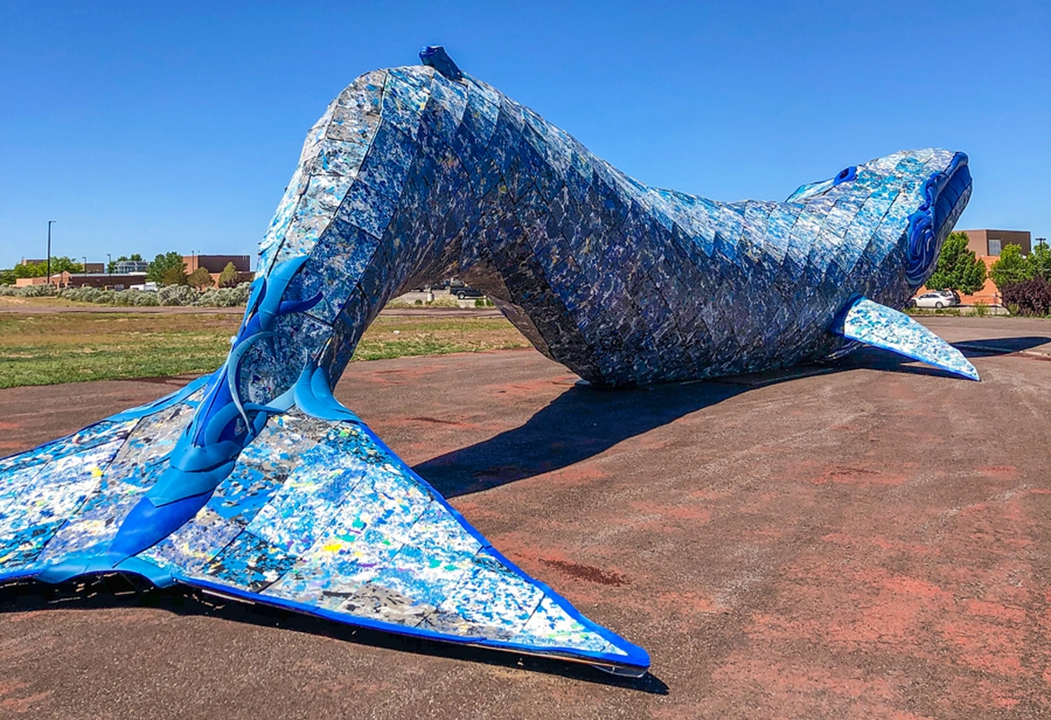 Students studying renewable energy at SFCC will light up the recycled materials blue whale shared with the campus by Meow Wolf.