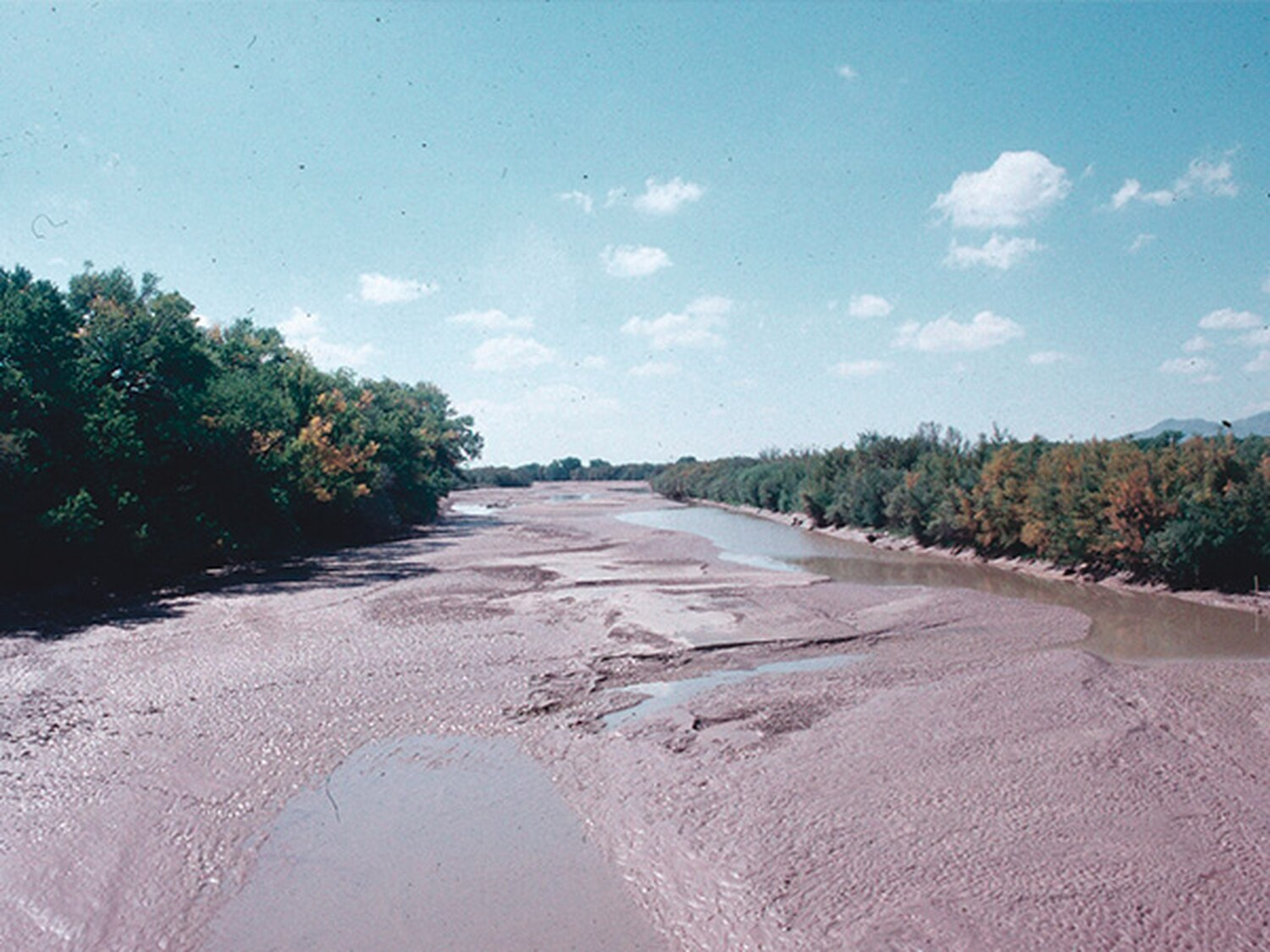 Hot, dry conditions have already caused severe drying of the Rio Grande—to the point that, earlier this month, water managers had to irrigate the river.