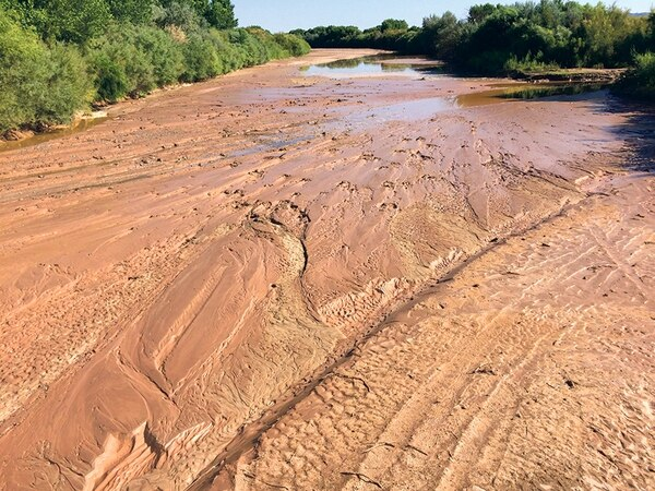 The Rio Grande runs dry every year when agricultural irrigators divert water.