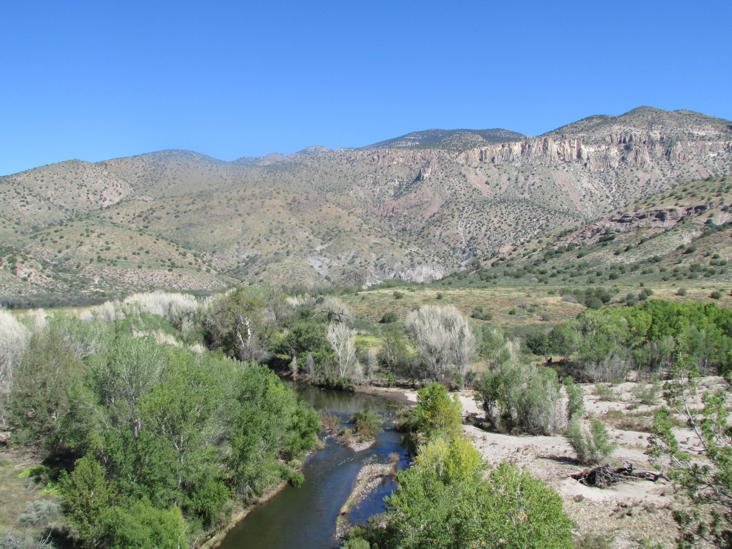 Gila River just downstream of the proposed diversion in the Cliff-Gila Valley