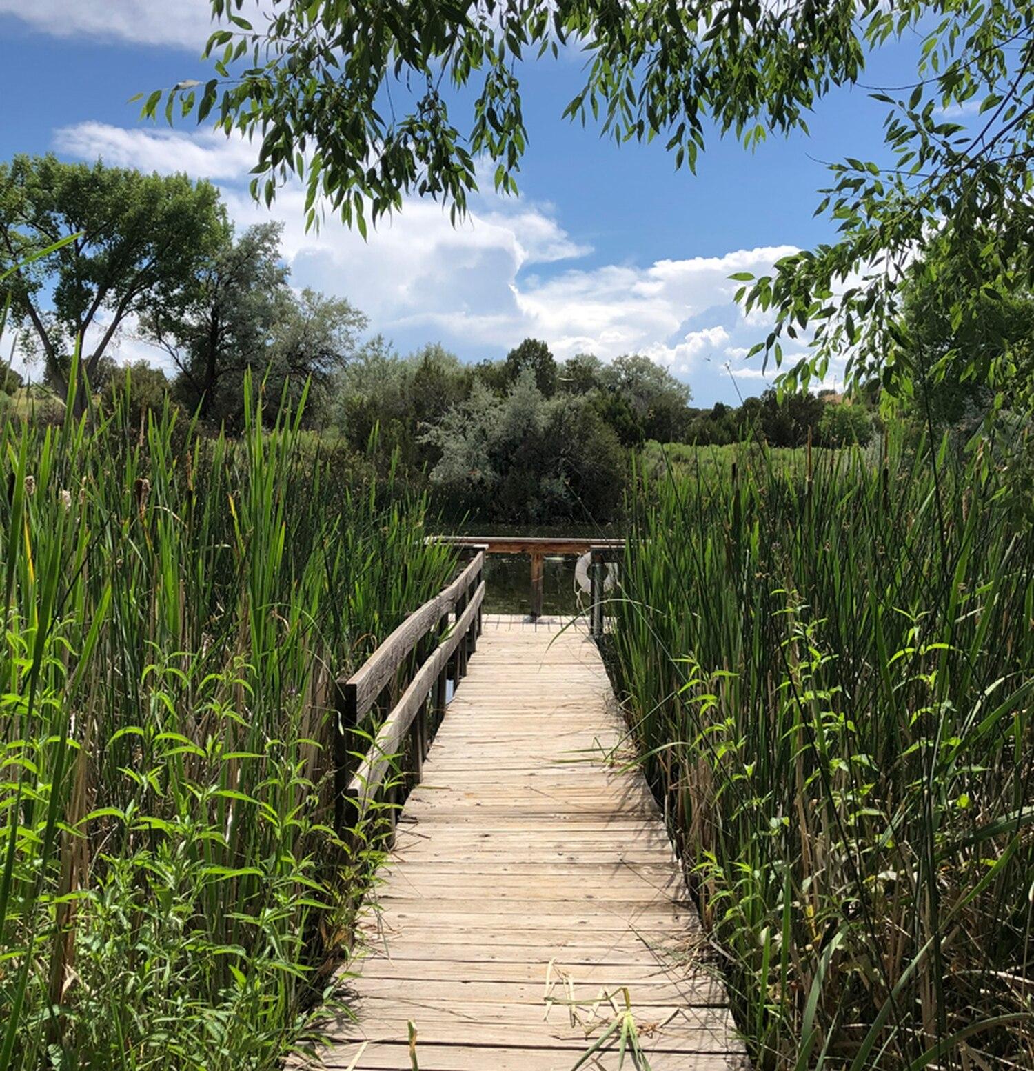 Leonora Curtin Wetlands Preserve.