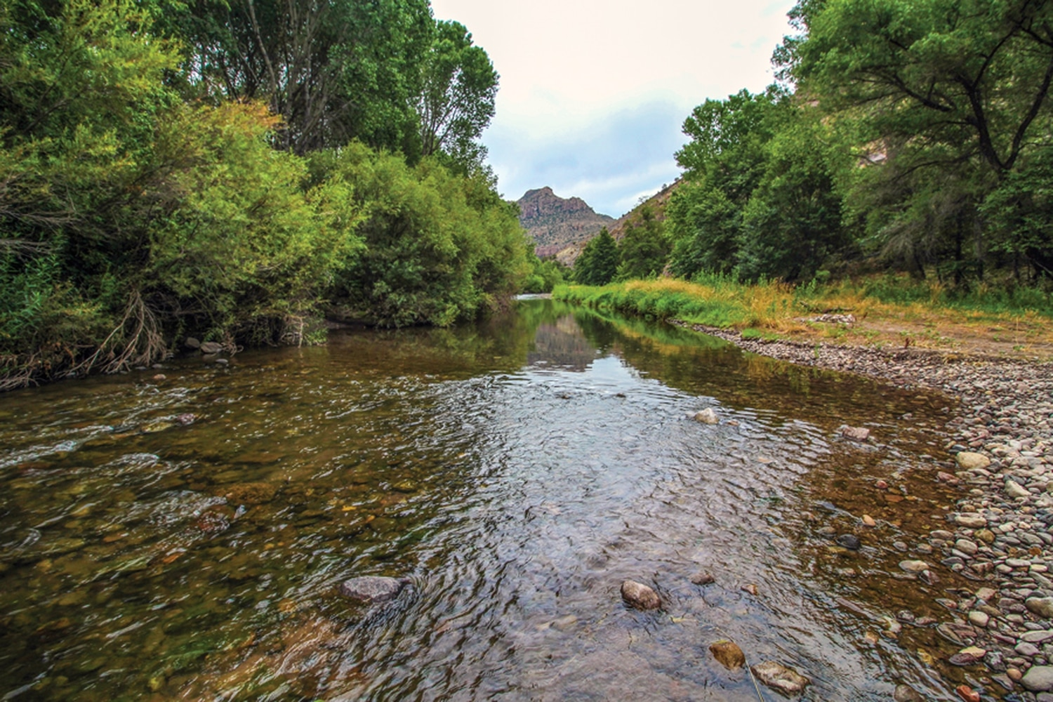 Although this stretch of the Gila River is outside the designated wilderness area, many consider it a de facto wilderness.
