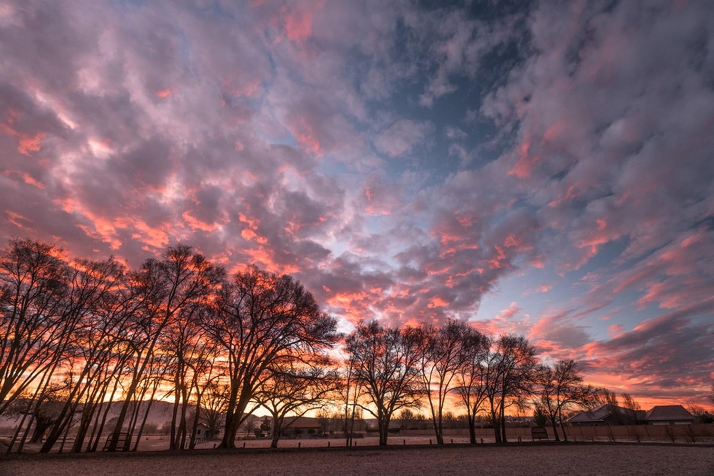 Rising Sun, Los Ranchos de Albuquerque by Ralph LaForge