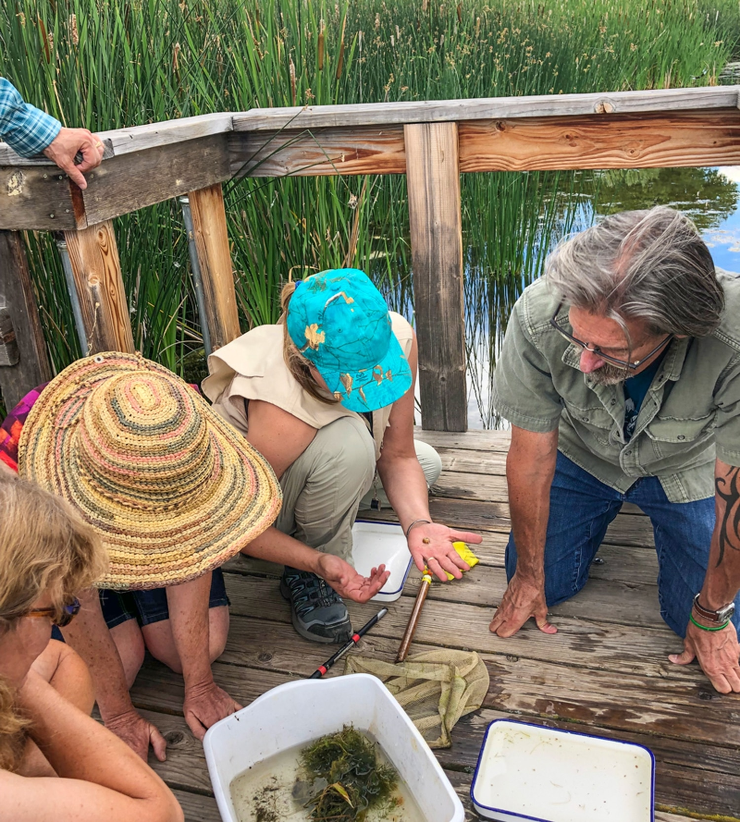 Wetland scientist Jeff Depew identifies various aquatic critters scooped from the pond during an exploration class at Leonora Curtin Wetlands Preserve.